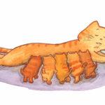 Vår lilla fru katt, En katt dier sine fem unger